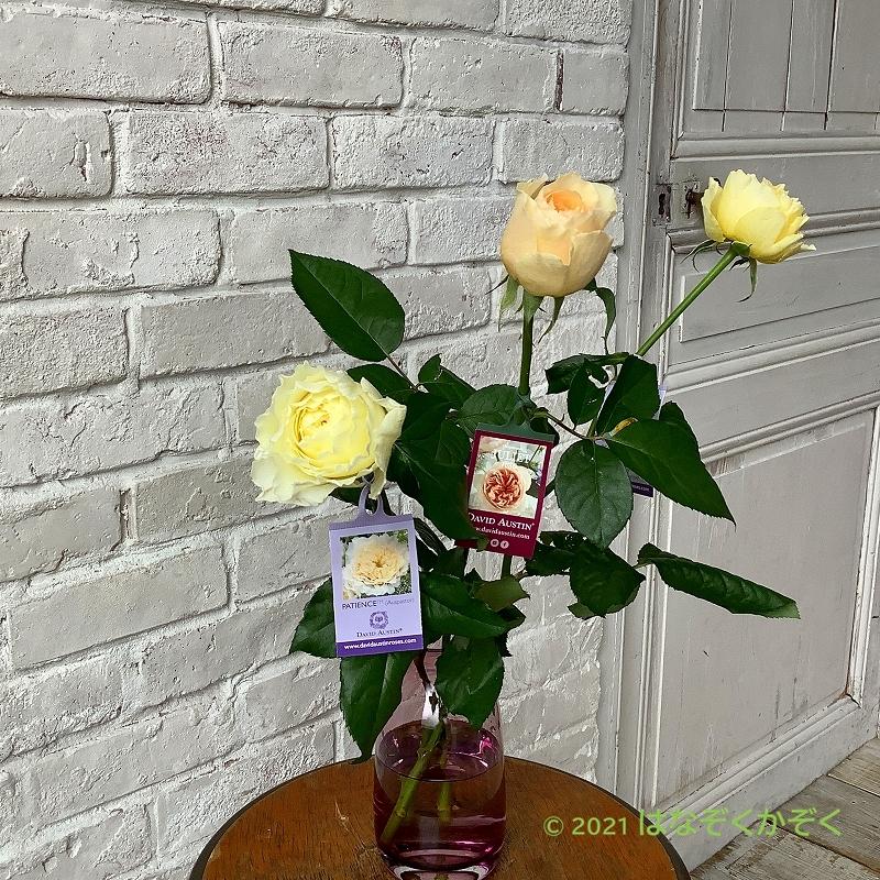 香りのバラ イングリッシュローズアソート15本