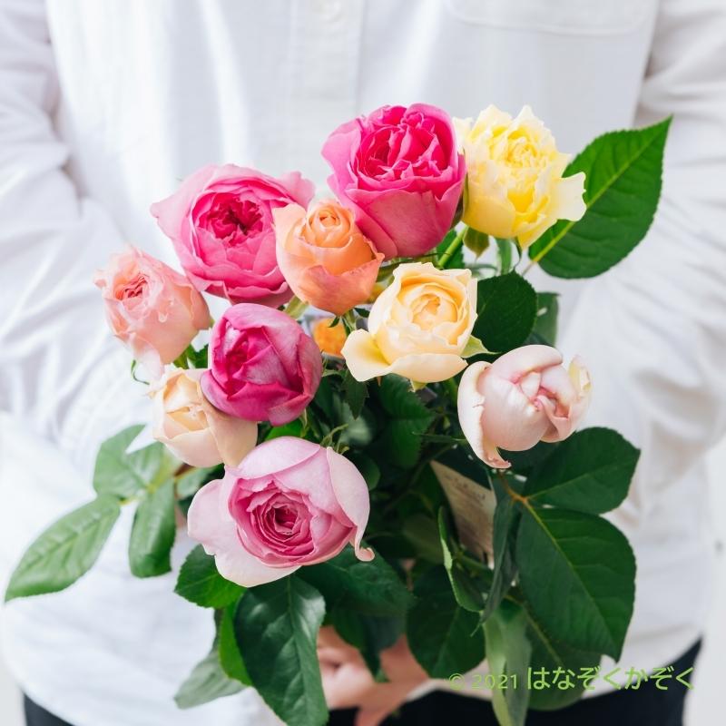 香りのバラ イヴと仲間たちアソート10本