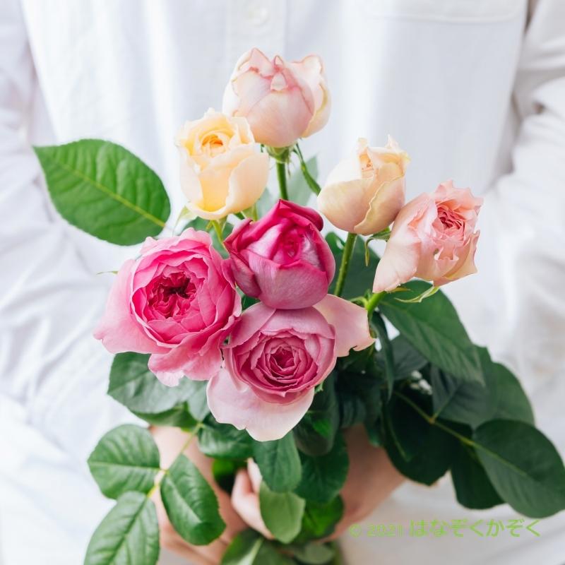 香りのバラ 今月の はなぞくかぞく ミックス 7本