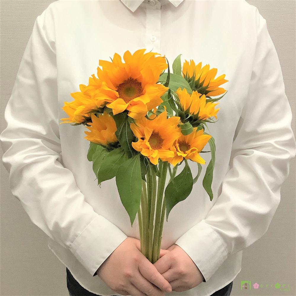 夏の主役!SmileFlowerFarmのヒマワリ(ビンセントクリアオレンジ)10本