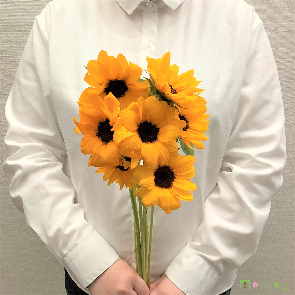 夏の主役!SmileFlowerFarmのヒマワリ(ビンセントタンジェリン)10本