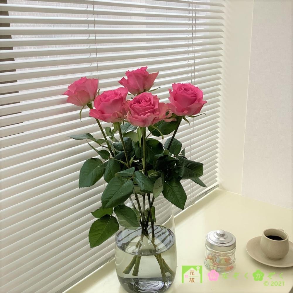 ハウスの中から最もゴージャスなバラを選び抜きました。ブロッサムピンク 15本
