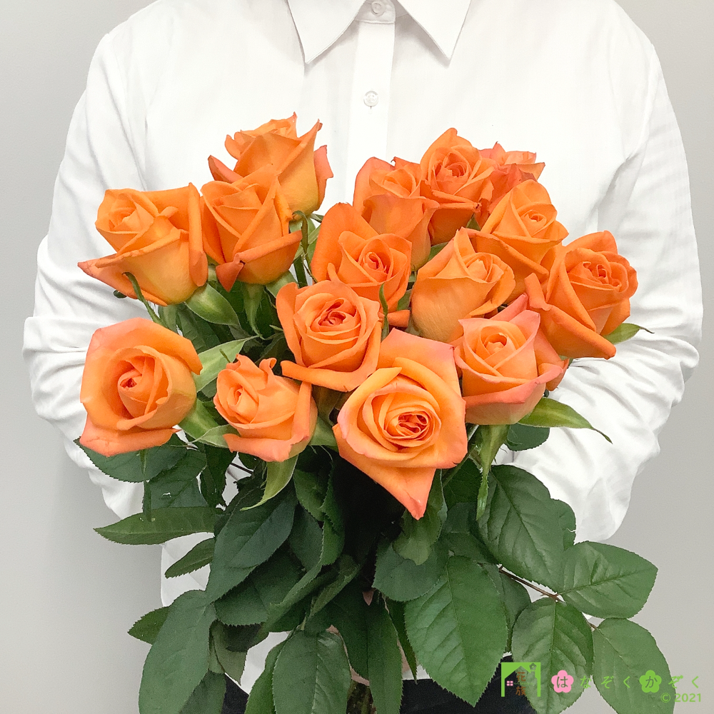 【バラ オレンジ】ハウスの中から最もゴージャスなバラをお届け。ブードゥー 15本