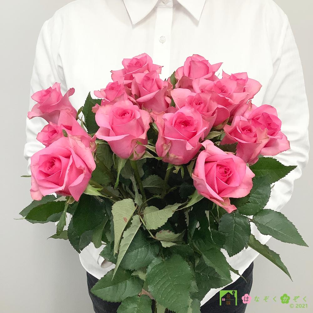 【バラ ピンク】ハウスの中から最もゴージャスなバラをお届け。ピンクフィズ 15本