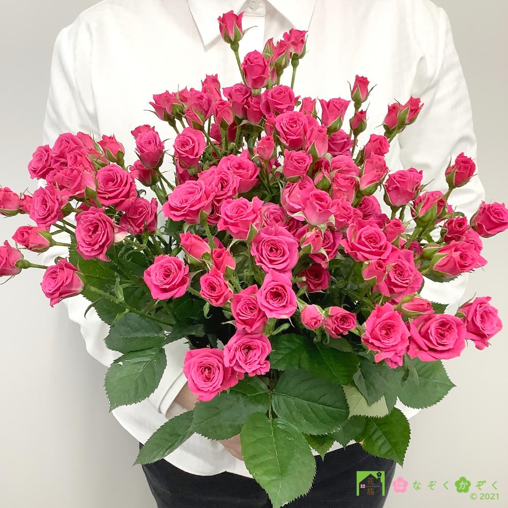 【バラ スプレー咲き】ハウスの中から最もゴージャスなバラをお届け。ラブリーリディア 15本