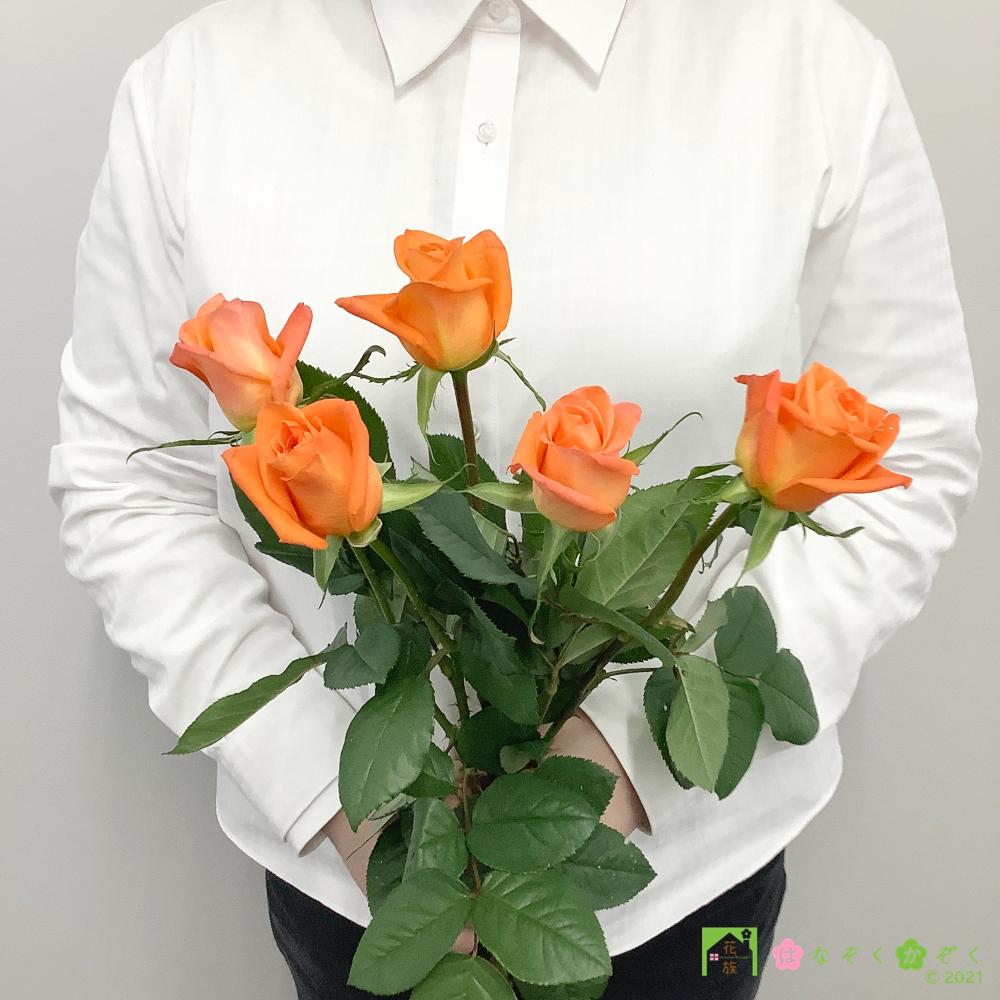 【バラ オレンジ】ハウスの中から最もゴージャスなバラをお届け。ブードゥー 5本