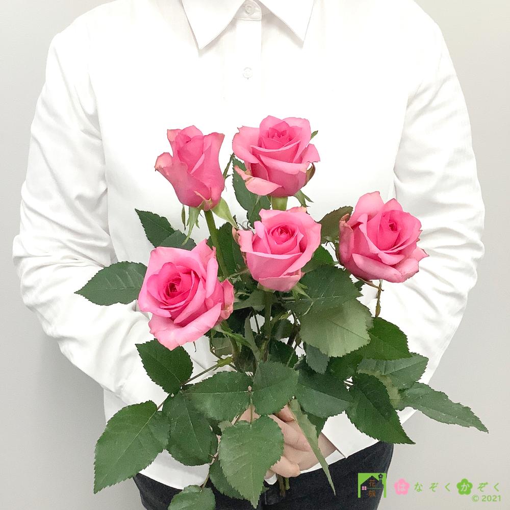 【バラ ピンク】ハウスの中から最もゴージャスなバラをお届け。ピンクフィズ 5本
