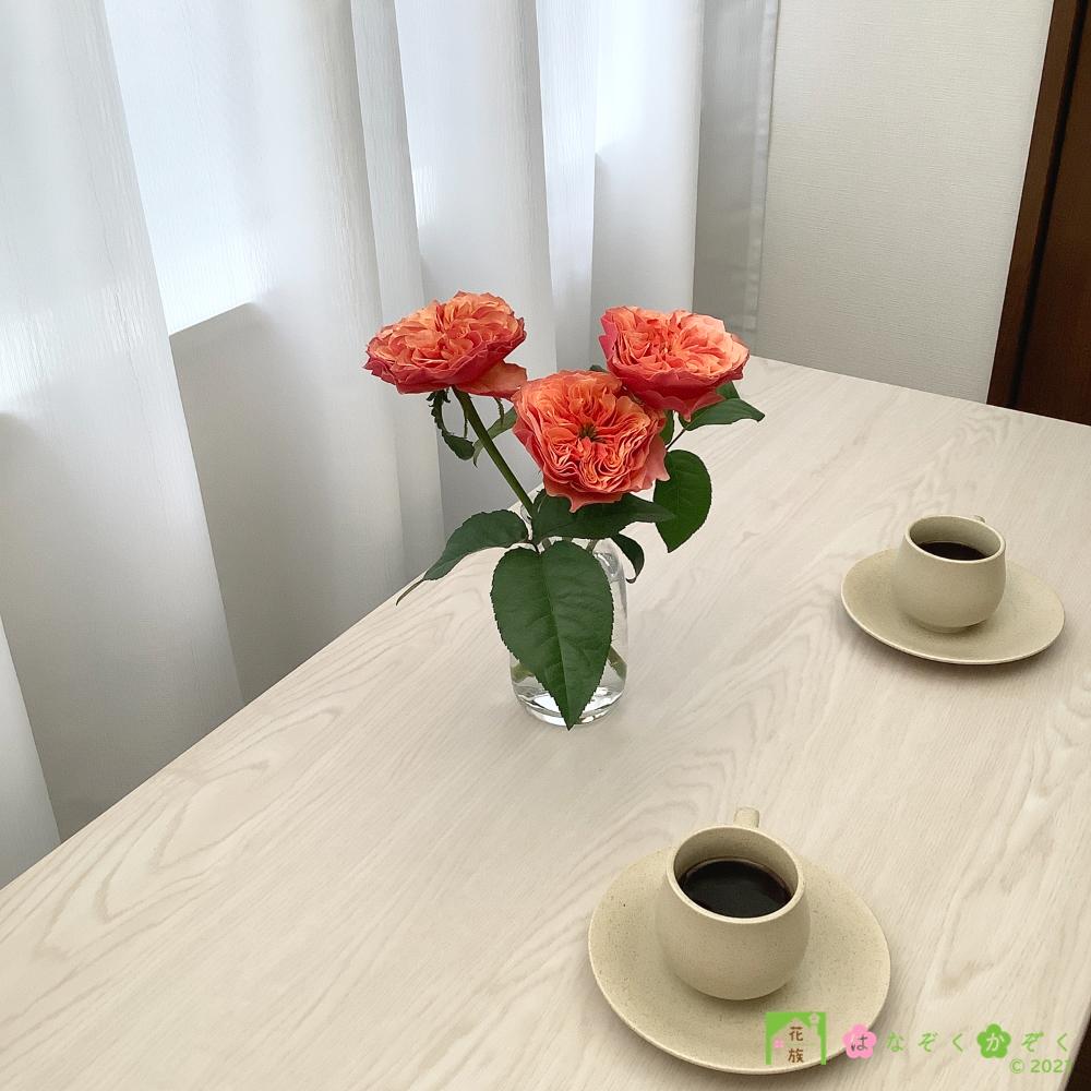 【バラ オレンジ】ケンジントンガーデン/ハウスの中からゴージャスなバラをお届け。5本