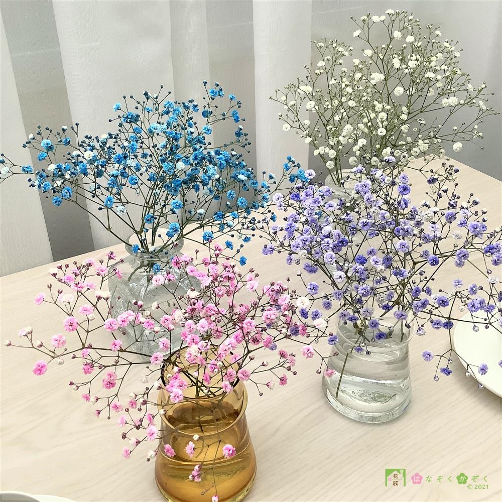 【6/19~販売】カスミソウ 3色MIX 15本