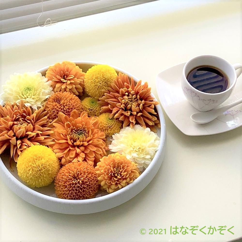 マムMIX(Yellow&Orange)15本