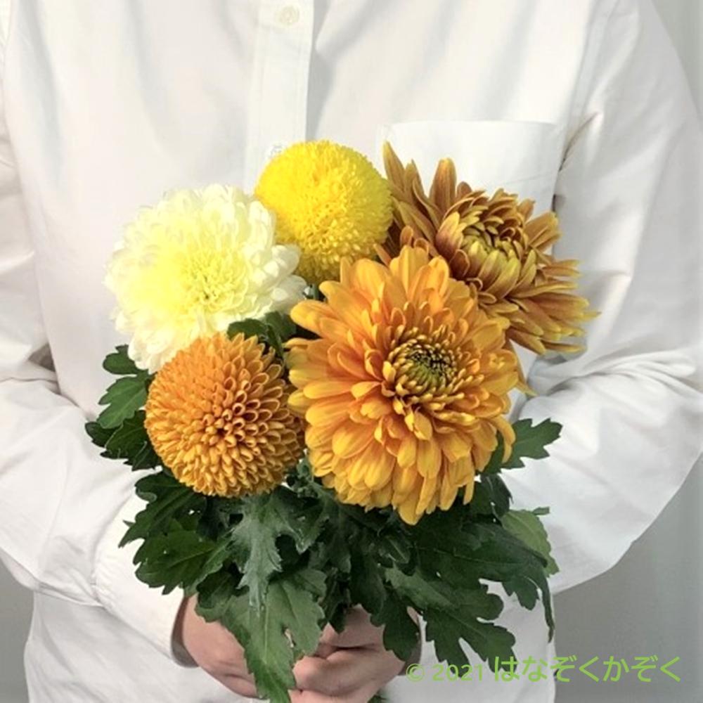 マムMIX(Yellow&Orange)5本