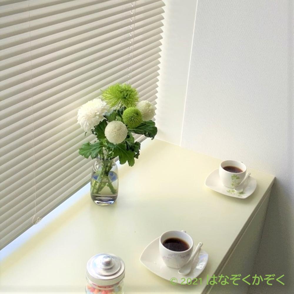 マム(洋菊)MIX(White&Green)5本